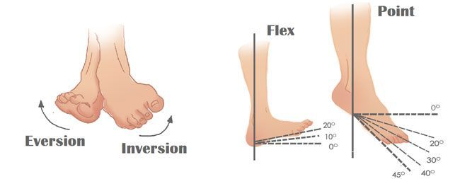 Ankle Mobility Exercises 2