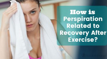 How is Perspiration Related to Recovery After Exercise